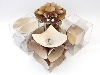 Rendering of a series of studies using bent wood as a design material