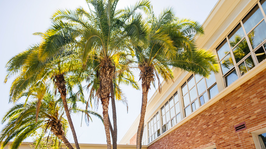 Perloff Hall at UCLA Architecture and Urban Design